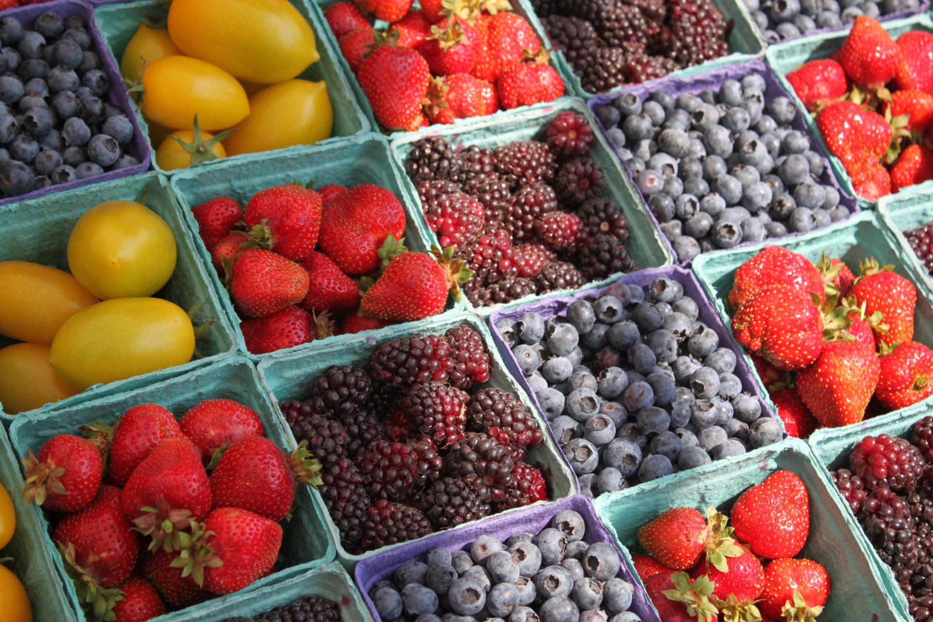 Imagen sector alimentario