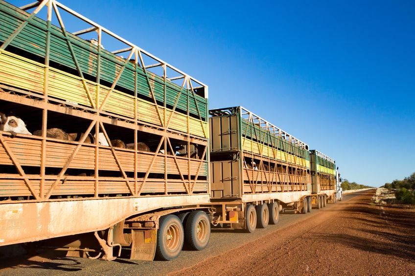 a normativa de limpieza y desinfección de vehículos para el transporte de animales vivos exige el uso de precintos de seguridad